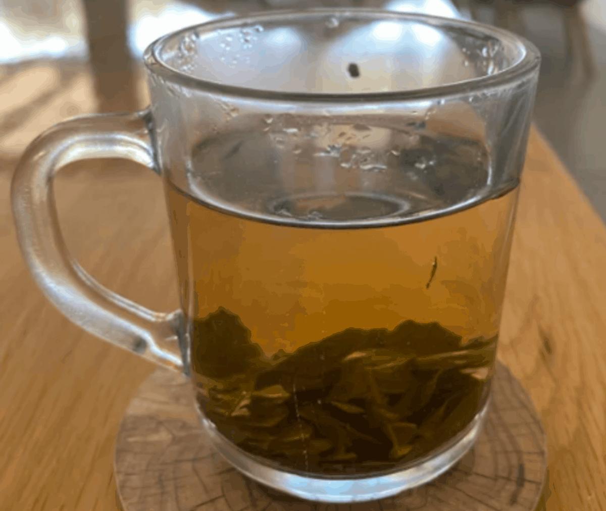 glass of coffee leaf tea