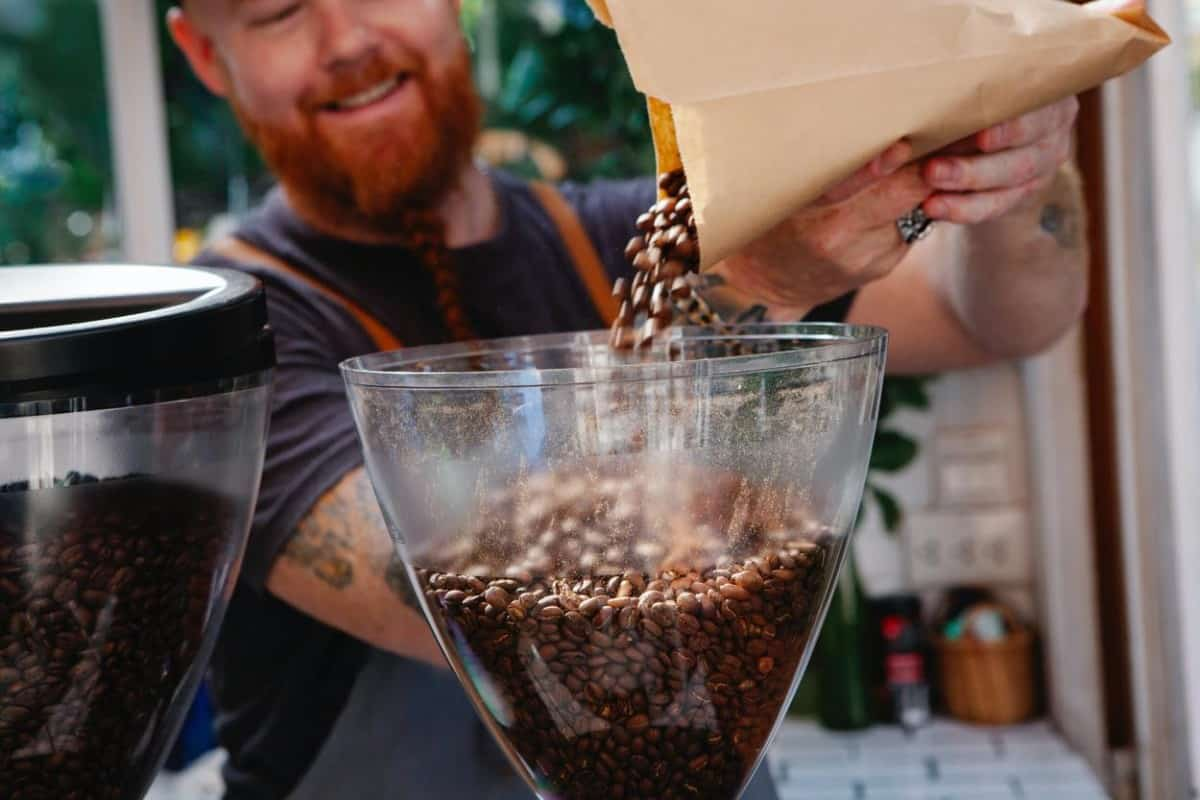 Coffee shop barista grinding coffee using conical burr grinder