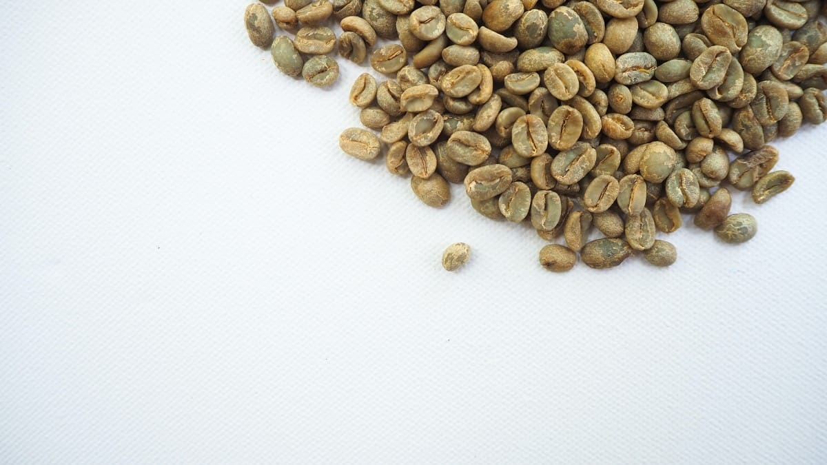scattered raw green coffee beans
