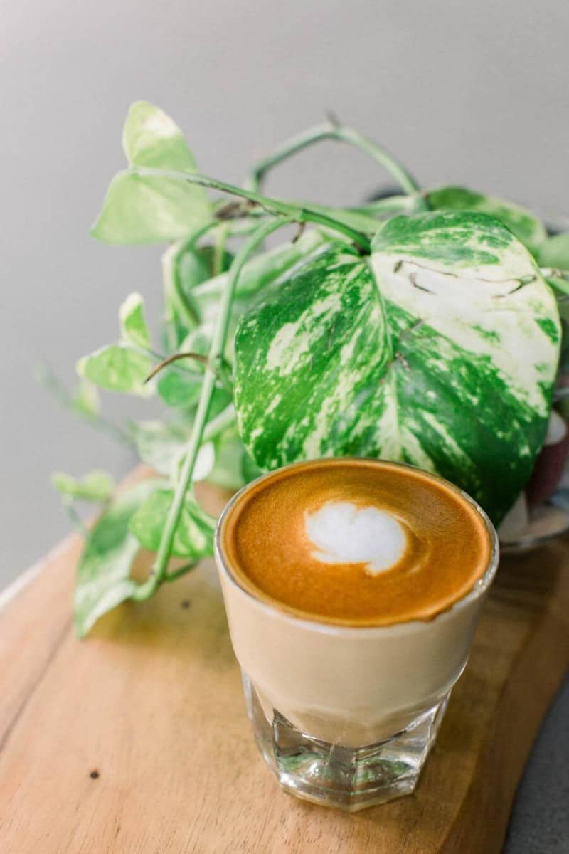 Coffee in a clear glass next to a plant