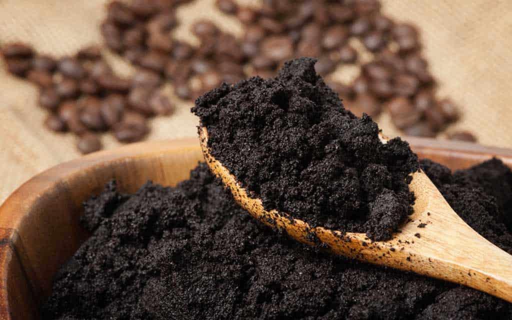 black soil on a wooden spoon